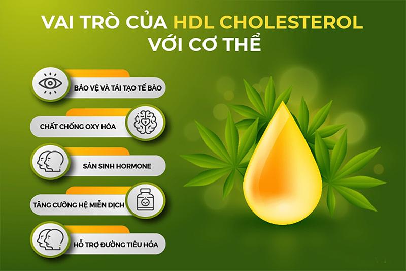 phân biệt LDL cholesterol và HDL cholesterol
