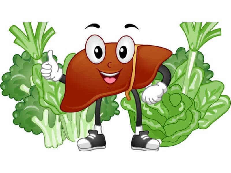 Ăn nhiều rau xanh giúp phòng tránh gan nhiễm mỡ