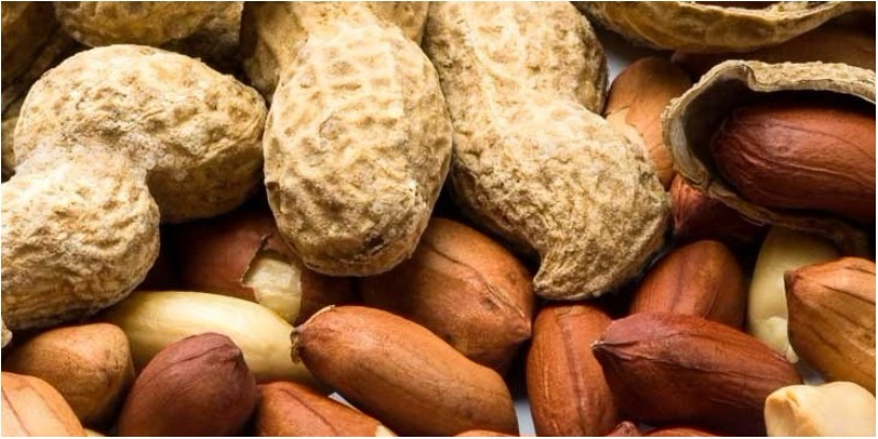 Cách chế biến các bài thuốc từ vỏ đậu phộng giúp cải thiện mỡ máu